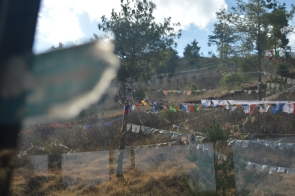 bhutan, nature, afurthershore, blog, altruism, troy-wilkinson, thoughtful, prayer flags, mindfulness