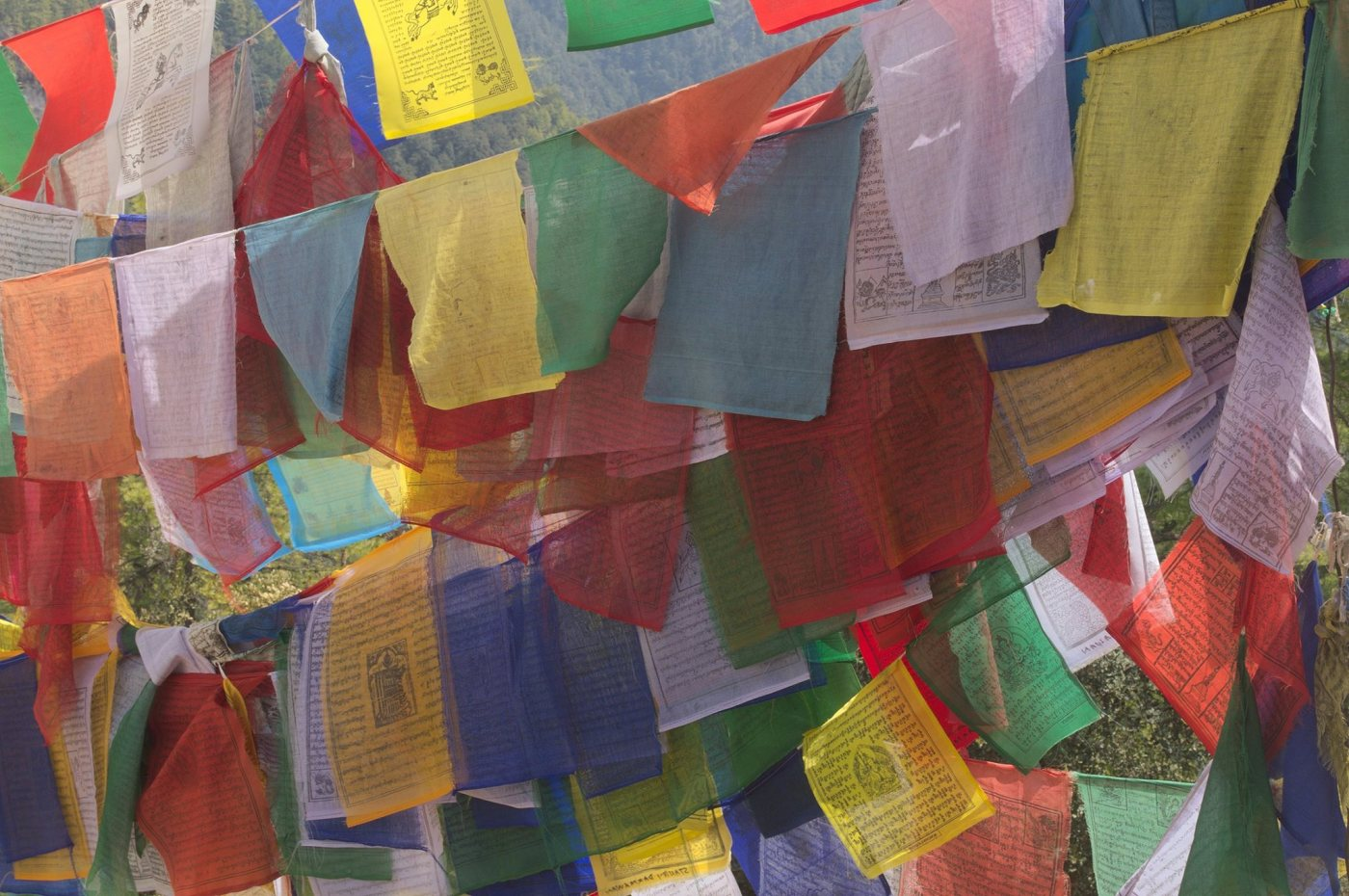 bhutan, nature, afurthershore, blog, altruism, troy-wilkinson, thoughtful, prayer flags