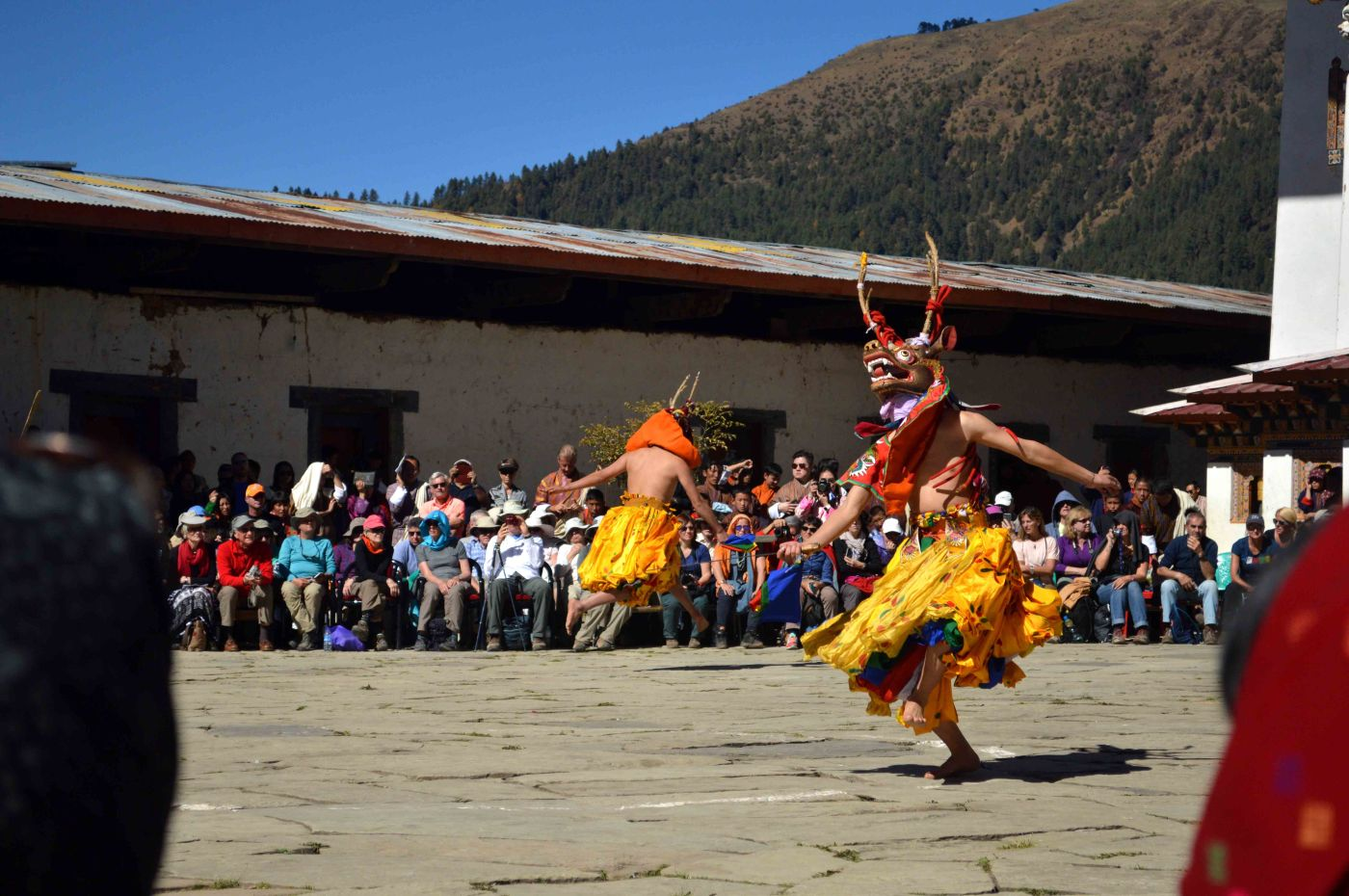 two Bhutanese mask dancers in vibrant colors and horned masks dancing in front of tourists in the temple in Phobjika Valley, Bhutan during the Black Neck Crane Festival